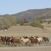 Thumbnail image for Brasada Ranch . . . homesite bargains