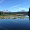 Thumbnail image for Dog Days of Summer in Bend