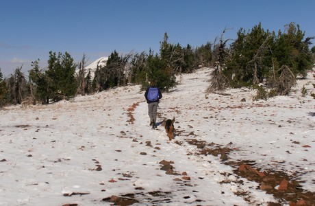 HIking w/ Realtor Sandy Kohlmoos  to Tumalo Peak