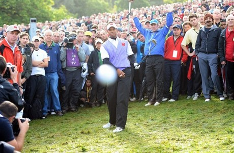 Tiger wonders about B of A halting foreclosures in all 50 states