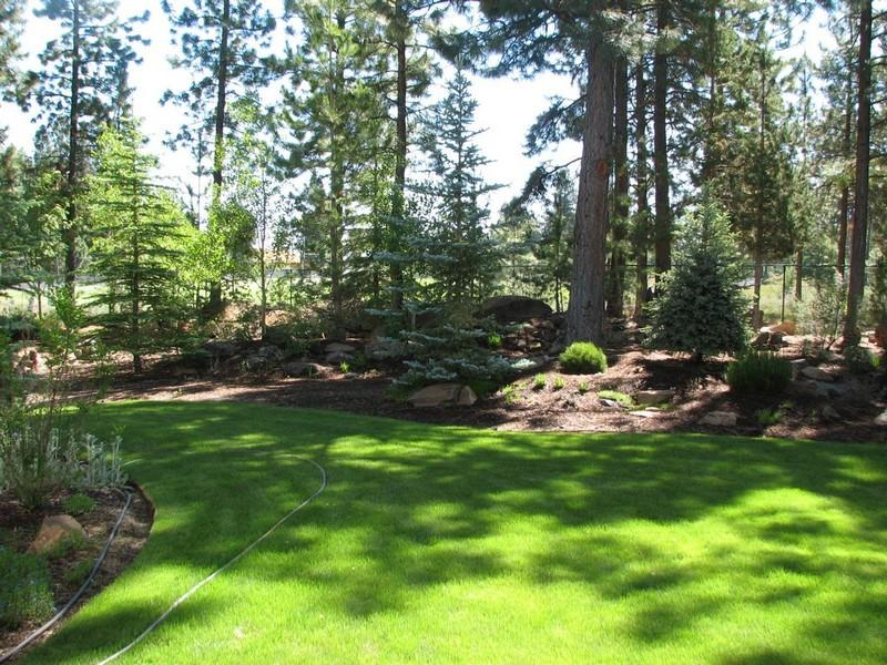 private backyard in the parks