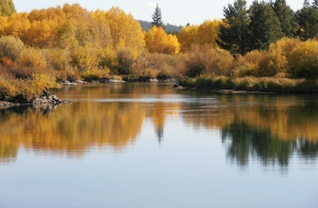 Deschutes River colors